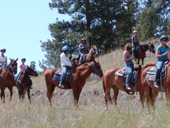 Trail Ride Horses with kids, parents, and wranglers
