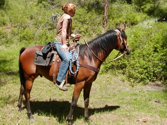 Trail ride routes are selected for each group.
