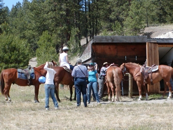 Trail Ride Orientation & Personal Adjustments before a trail ride.